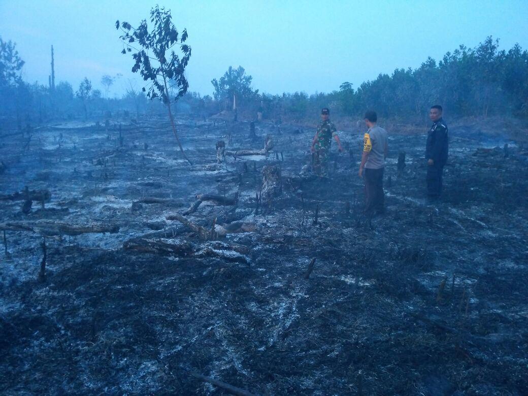 1 Hektar Lahan PT NPM Terbakar
