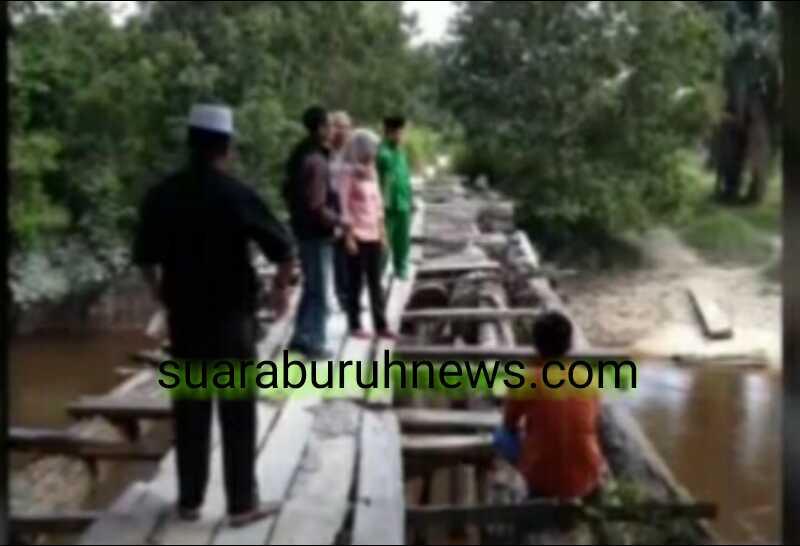 Tanpa Perhatian Pemkab Pelalawan Warga Desa Bakung Nikmati Jembatan Roda-roda Maut, Warisan Kabupaten Kampar