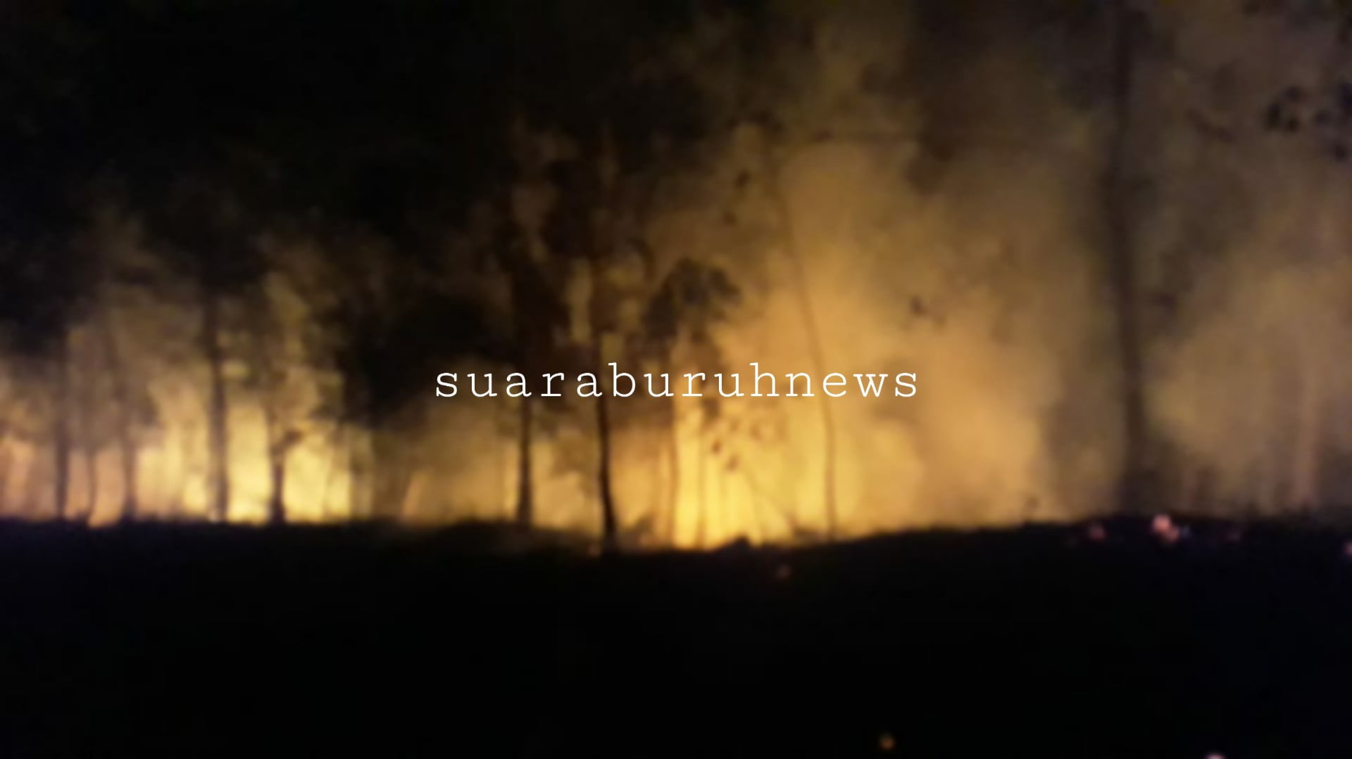 Lahan Perbatasan Desa Tambak dan Sotol Terbakar