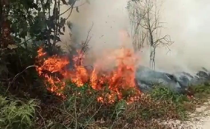 Dari tadi Malam Lahan Desa Tambak Terbakar Ditemukan 3 Titik Hotspot