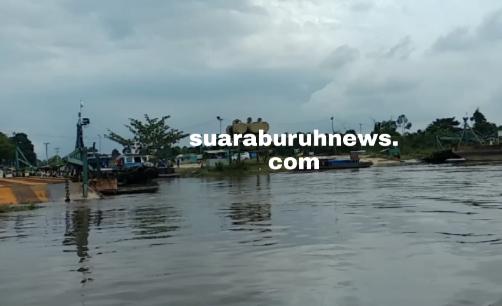 Rumah Warga Langgam Digenangi Banjir, Bantuan Tak Turun – turun