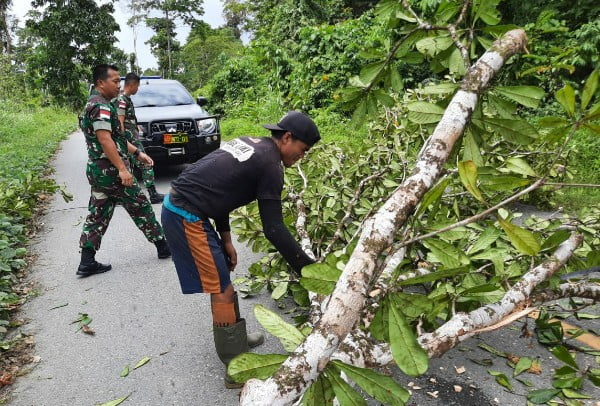 Kesigapan Satgas Raider 300 Singkirkan Pohon Tumbang Yang Menutupi Jalan