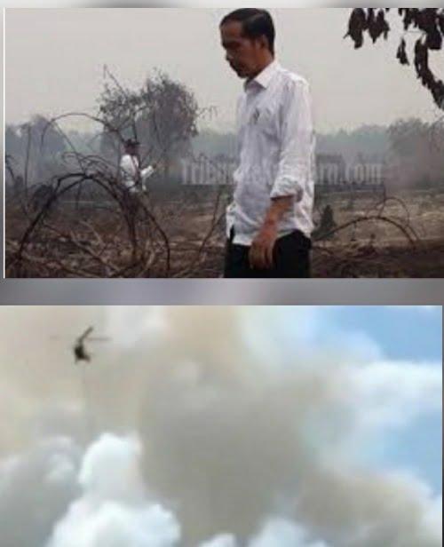Setelah Ditinjau Jokowi, Karhuta Itu Terulang lagi Hanya Berjarak 4 Km